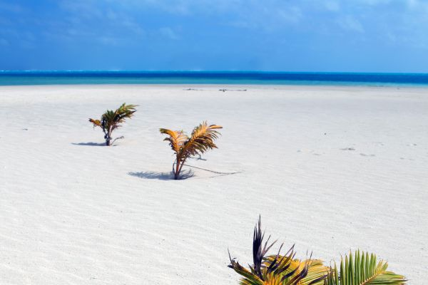 Playa de Atiu, Las playas desiertas de Atiu, Las costas, Islas Cook