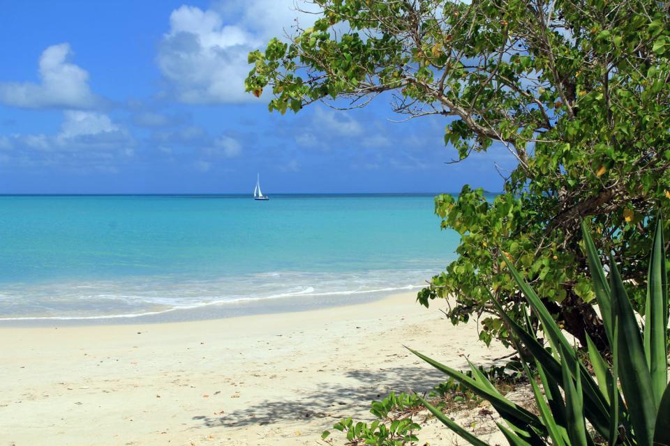 Barbuda , Antigua et Barbuda
