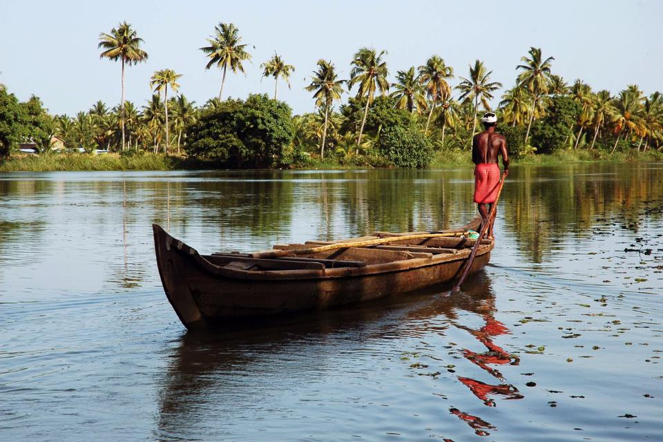 The backwaters , India