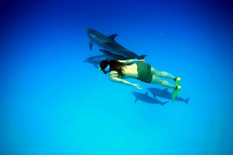 La plongée sur Bonaire , Antilles néerlandaises