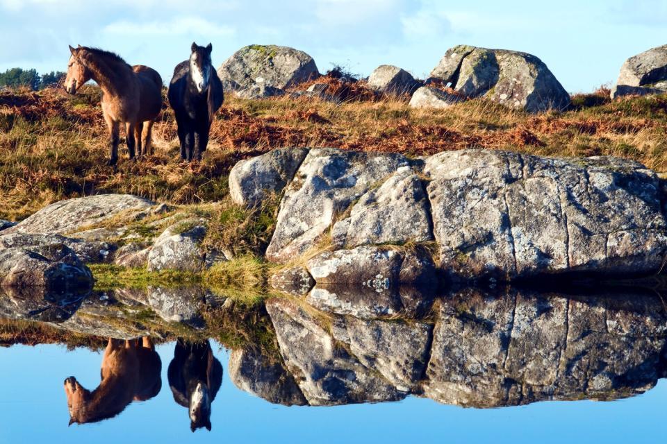 Il Connemara , Tramonto in Connemara , Irlanda