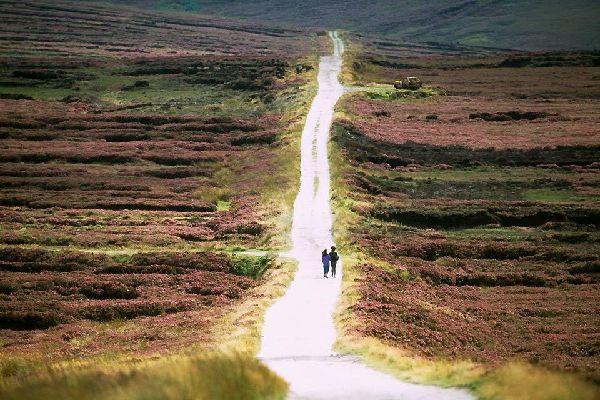 Das Granitgebirge von Wicklow , Die Berge von Wicklow , Irland