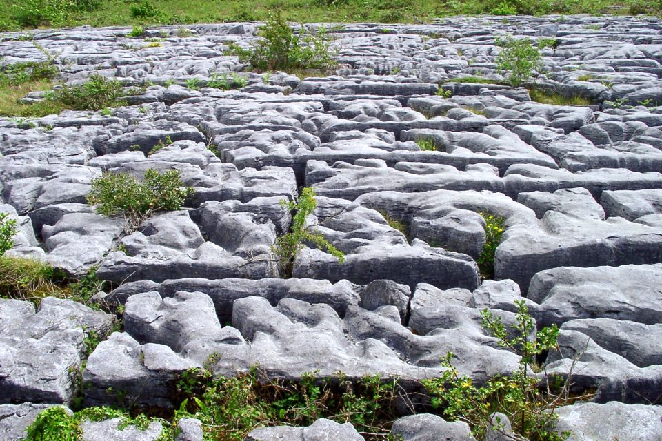Las grinkes, región del Burren, El desierto calcáreo de Burren, Los paisajes, Irlanda