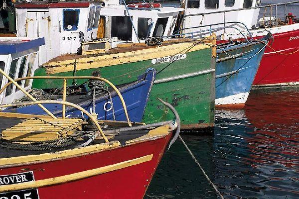 The ports of the east coast , Eastern Ireland , Ireland