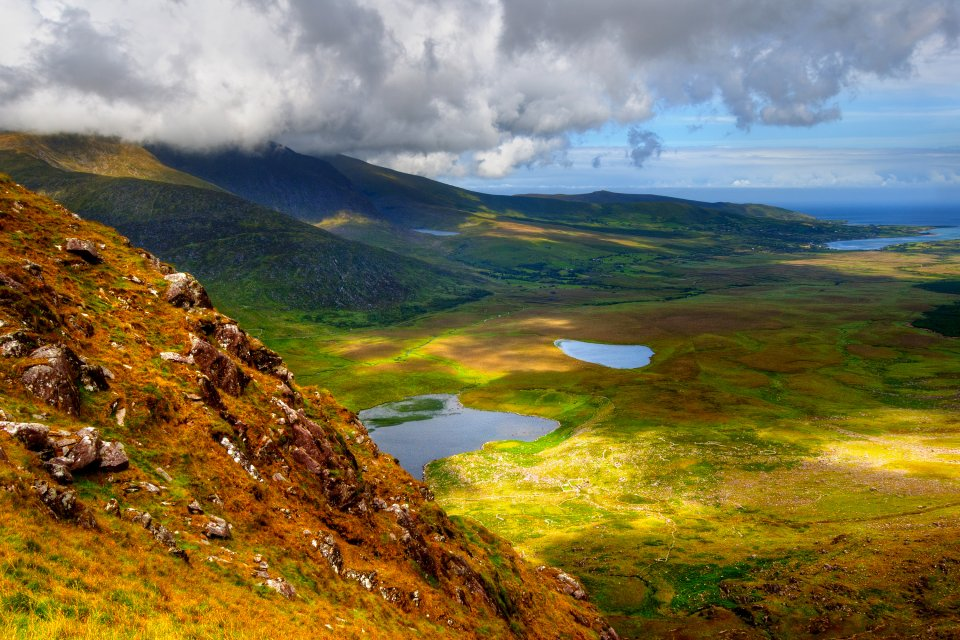 The flora in Ireland, Plant wildlife, The fauna and flora, Ireland