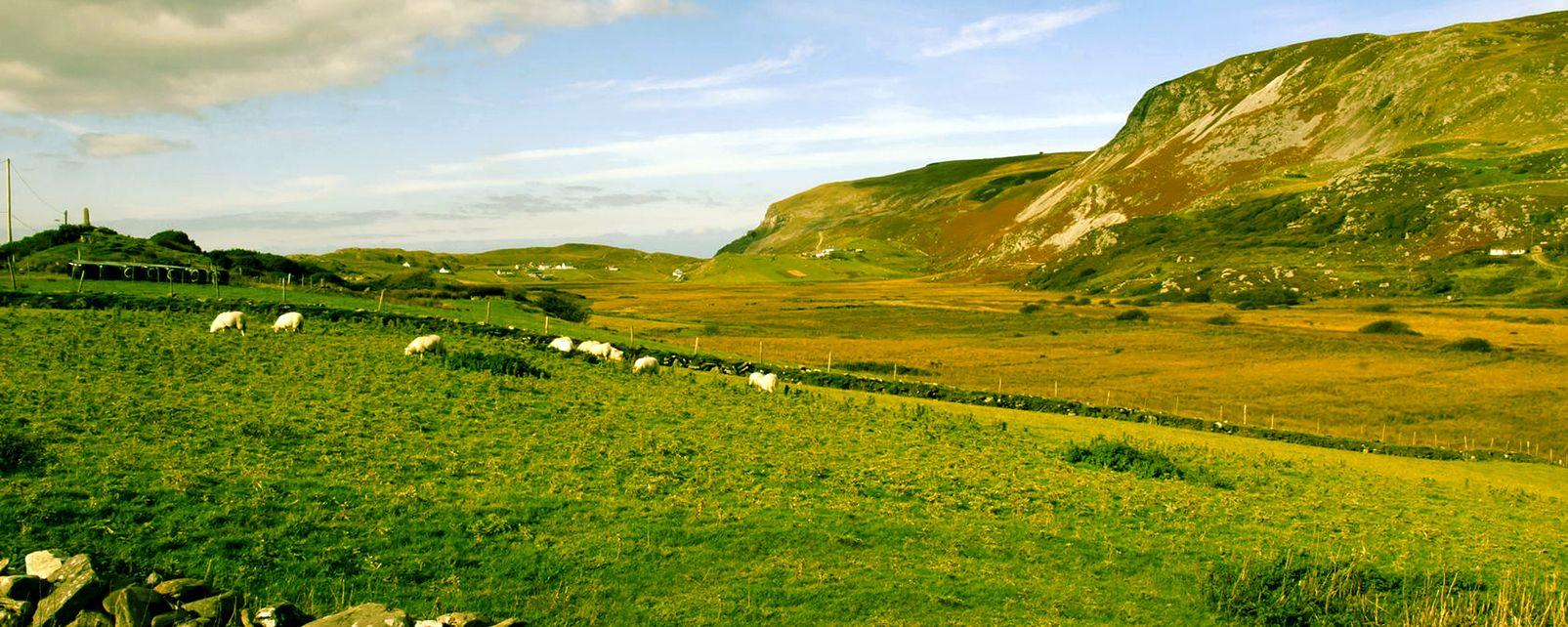 La tourbe irlandaise, Les Gaeltachts, Les arts et la culture, Irlande