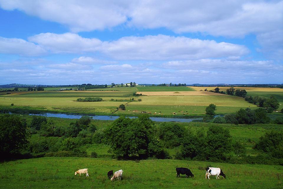 Newgrange , L'area di Newgrange, Irlanda , Irlanda