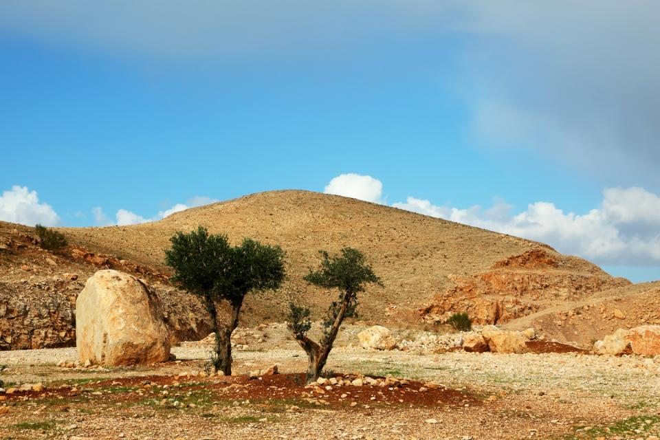 Les collines du centre , Les régions centrales , Israël