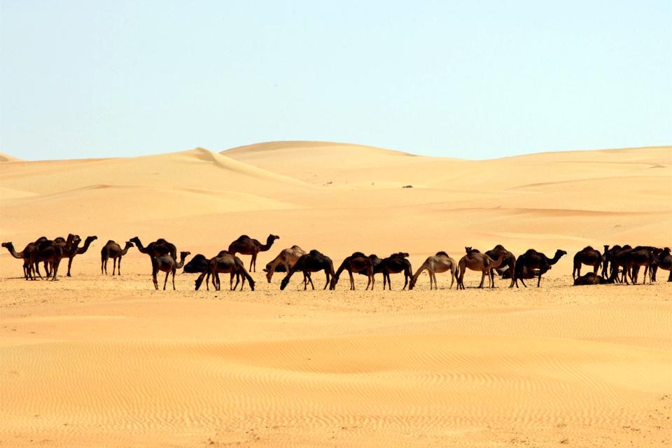 El desierto Rub' al-Khali , Arabia Saudí