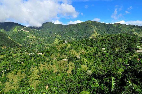 Le vette delle Blues Mountains , Giamaica