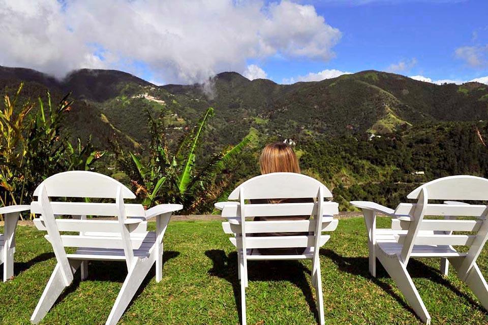 Le pic des Blue Mountains , La riche végétation des Blue Mountains , Jamaïque