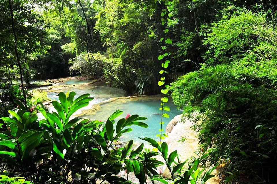 Rivers , Jamaica