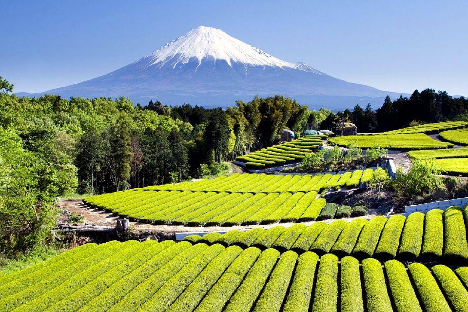 El monte Fuji , no title ! , Japón