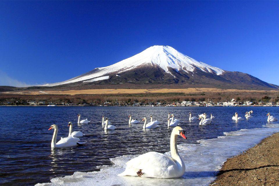 El monte Fuji , El Monte Fuji visto desde el tren , Japón