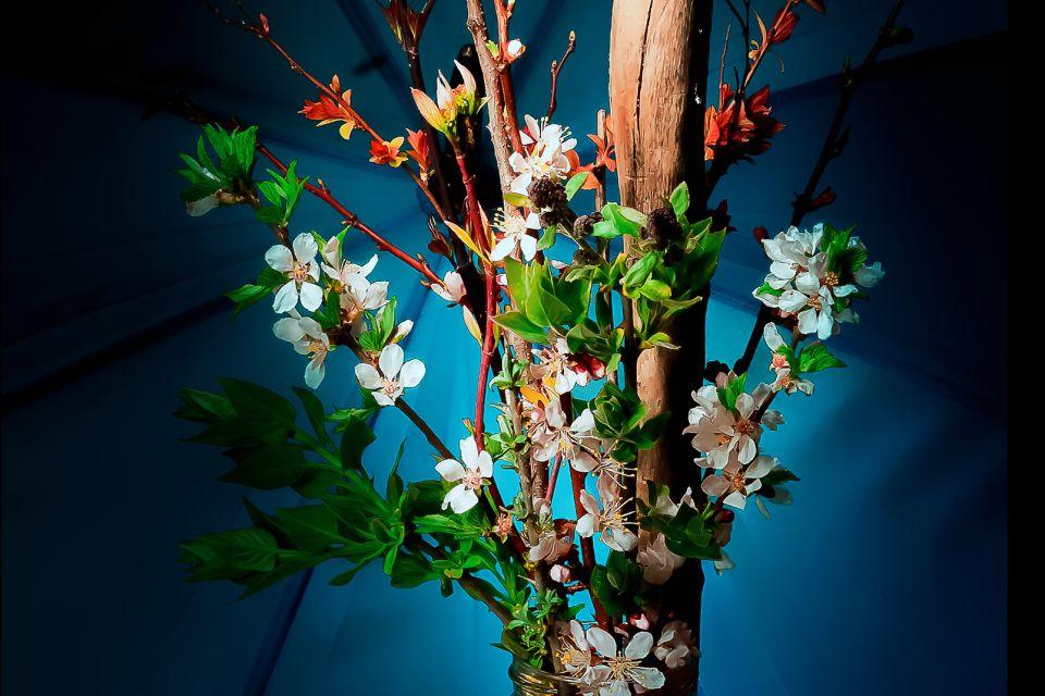 Una tradición con 13 siglos de antigüedad., El ikebana, Arte y cultura, Japón
