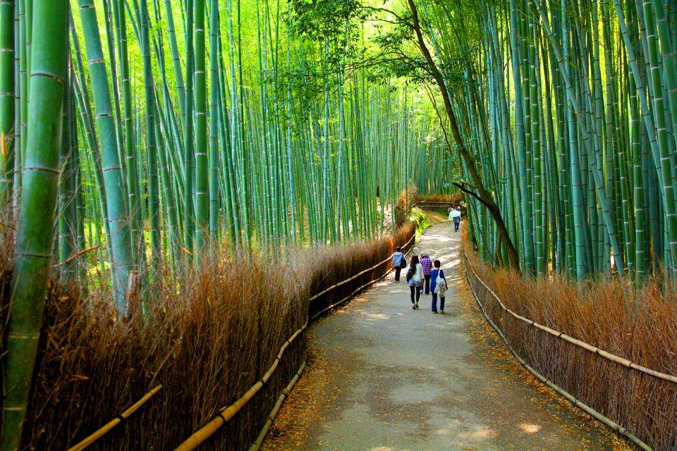 Geishas , Bamboo , Japan