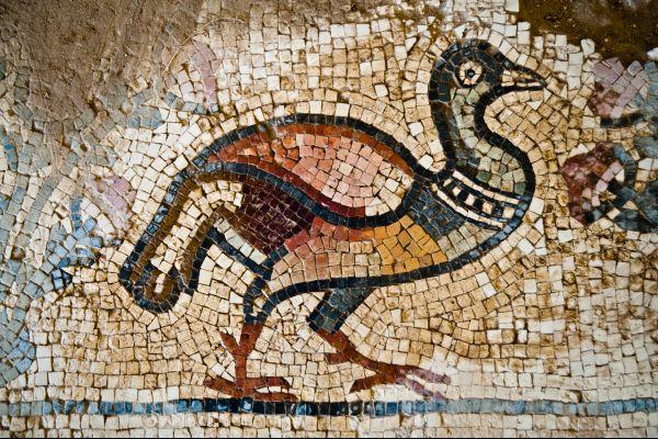 Les arts et la culture, jordanie, mosaïque, vestige, art, moyen-orient, canard