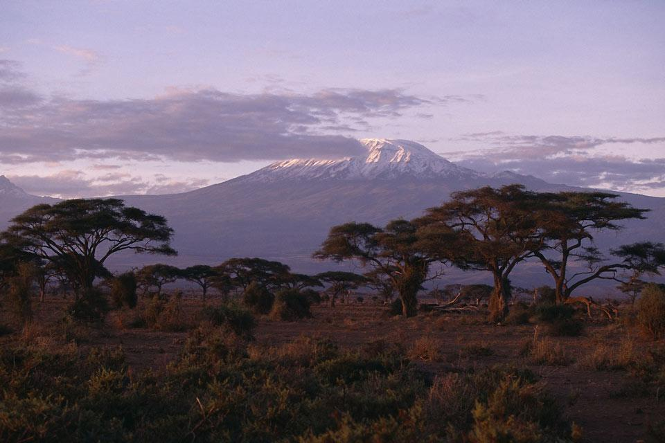 La reserva de Amboseli , El éxito de Amboseli , Kenia