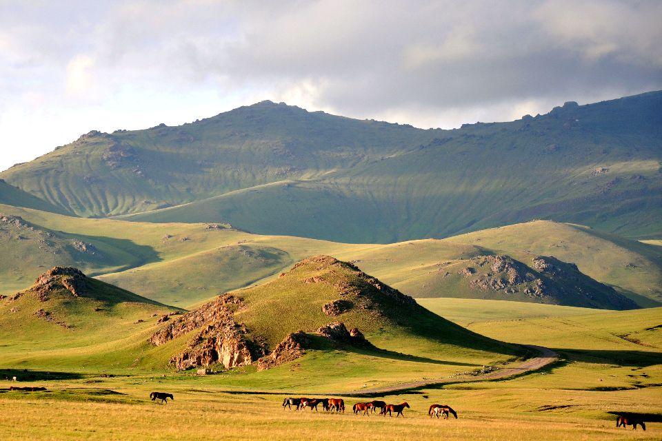 La fauna , Kirguistán