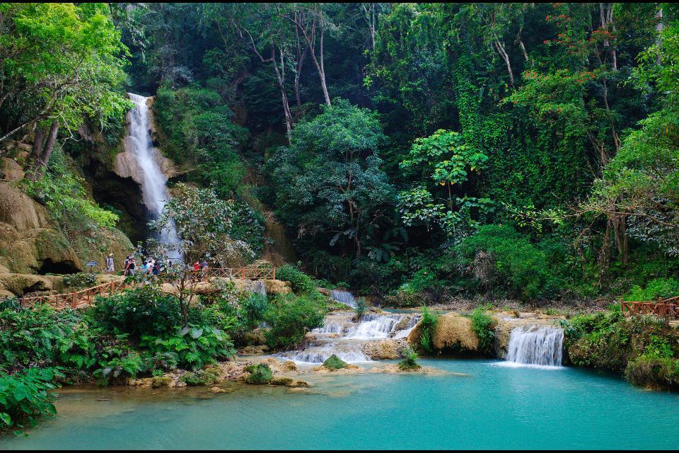 Wälder und Landwirtschaft , Laos