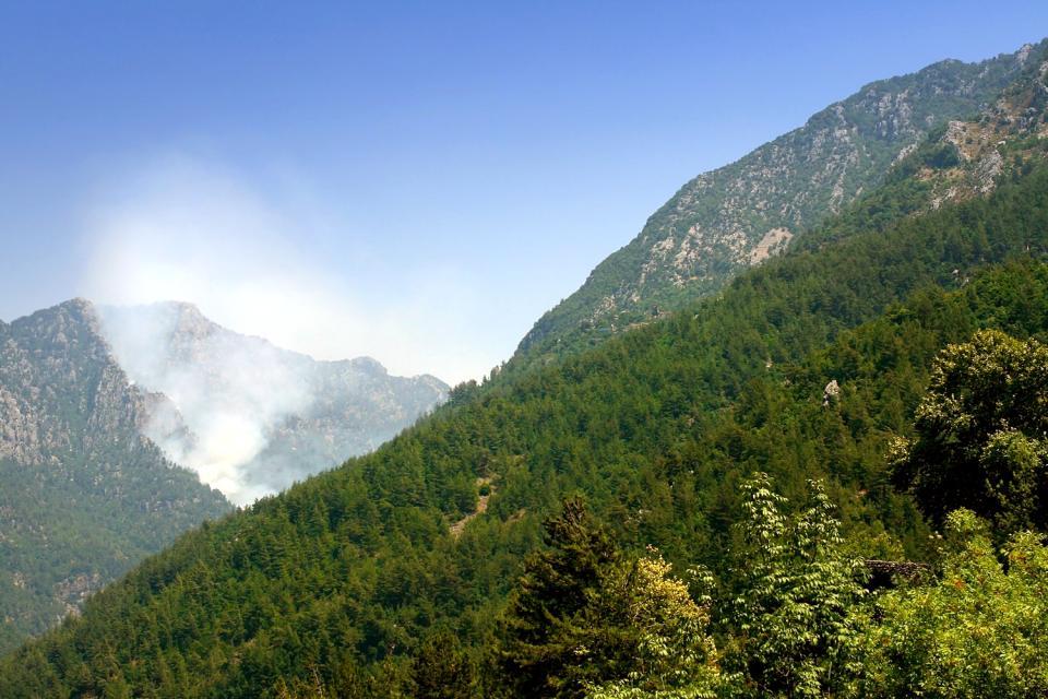 Les montagnes et les plaines , Liban