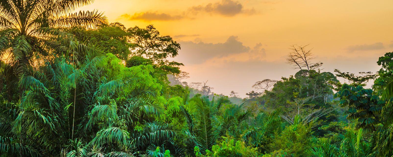 Der Nationalpark von Sapo, Die Landschaften, Liberia