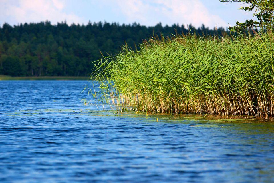 Die Parks Aukstaitija und Zemaitija , Litauen