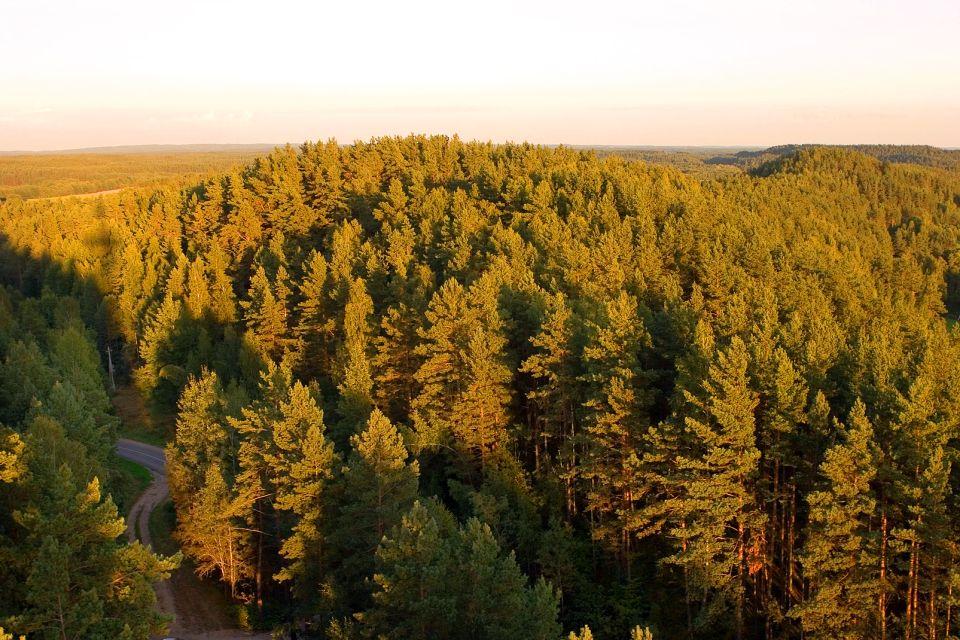 Le Parc de Dzukija , Lituanie