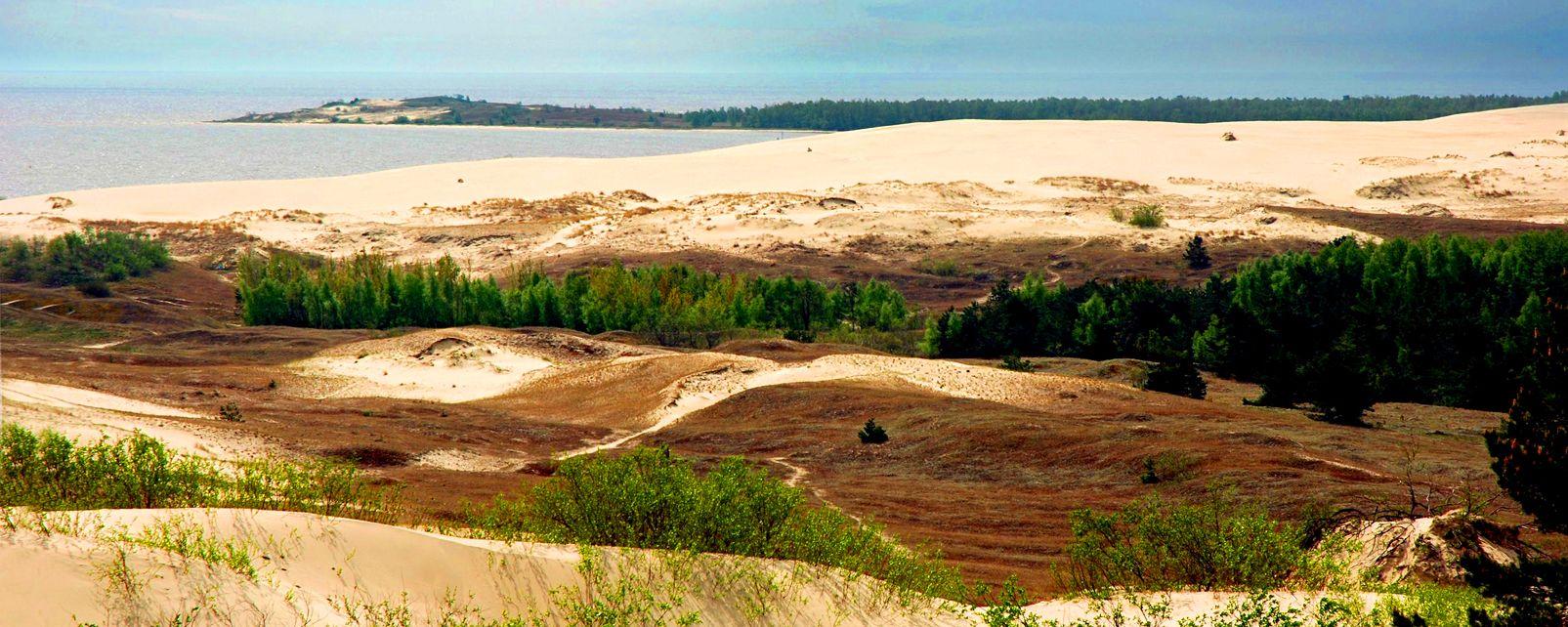 Der Nationalpark von Kursiu Nerija , Litauen