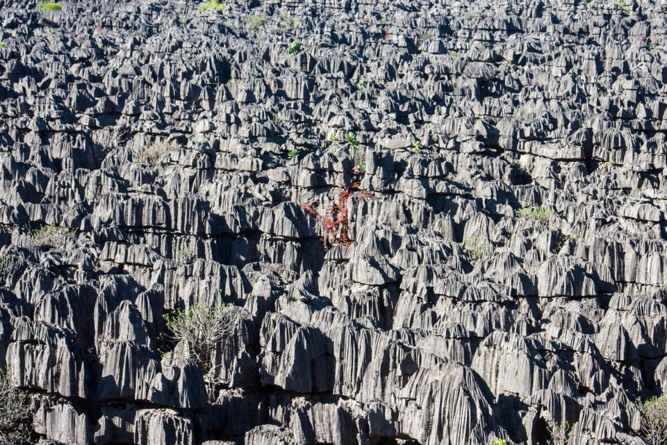 The tablelands , Madagascar
