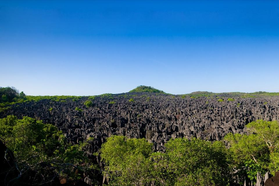 The tablelands , The Tsingy of Bemaraha , Madagascar