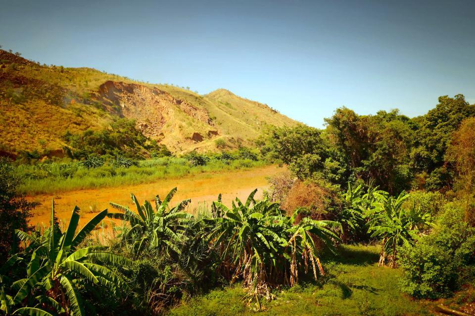 The high plateaux , Madagascar