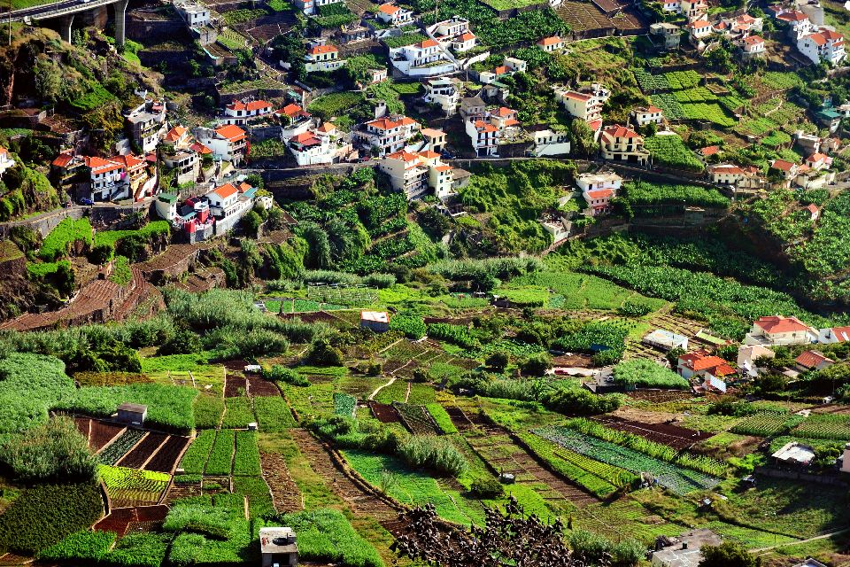 Les terres cultivées , Récoltes en cascade , Portugal