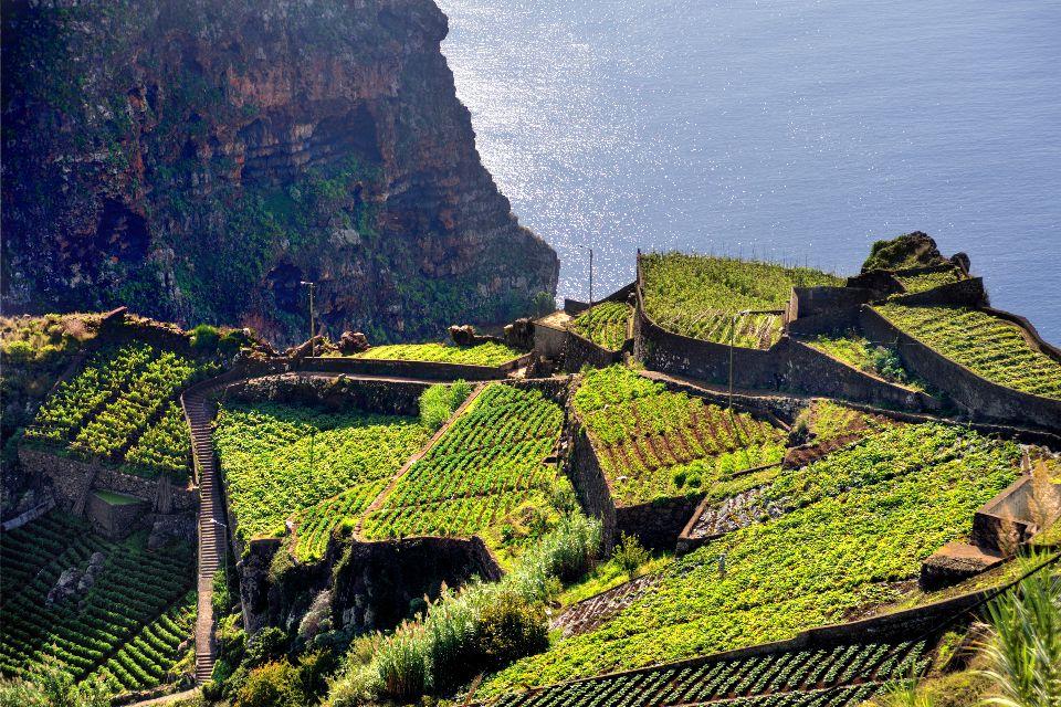 Les terres cultivées , Portugal