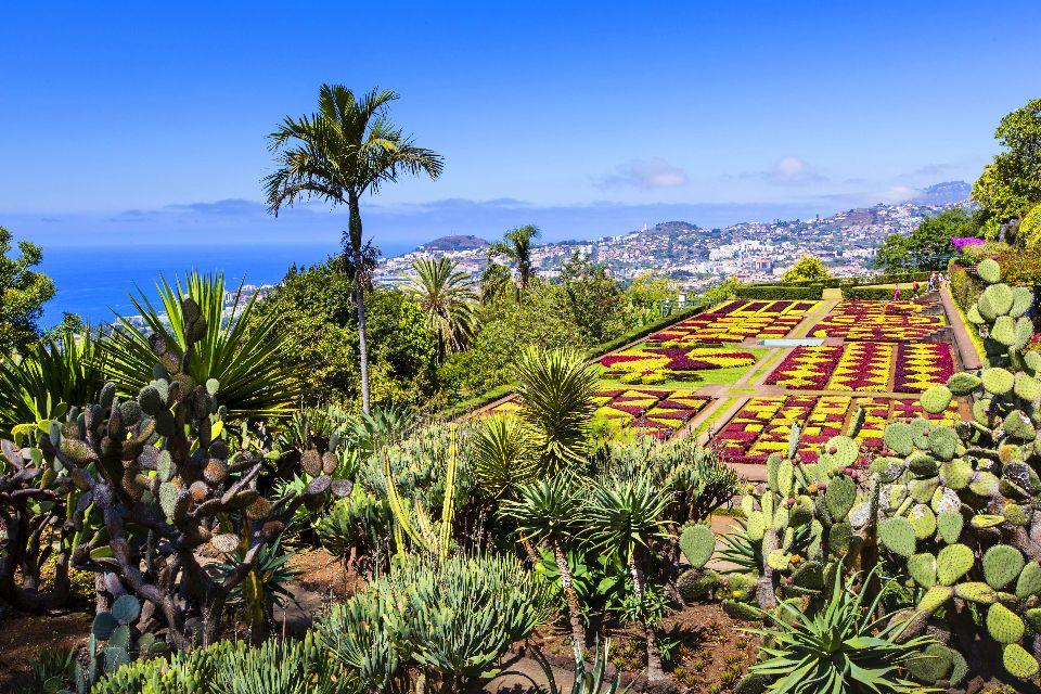 Le jardin botanique de Funchal , Au pays des fleurs , Portugal