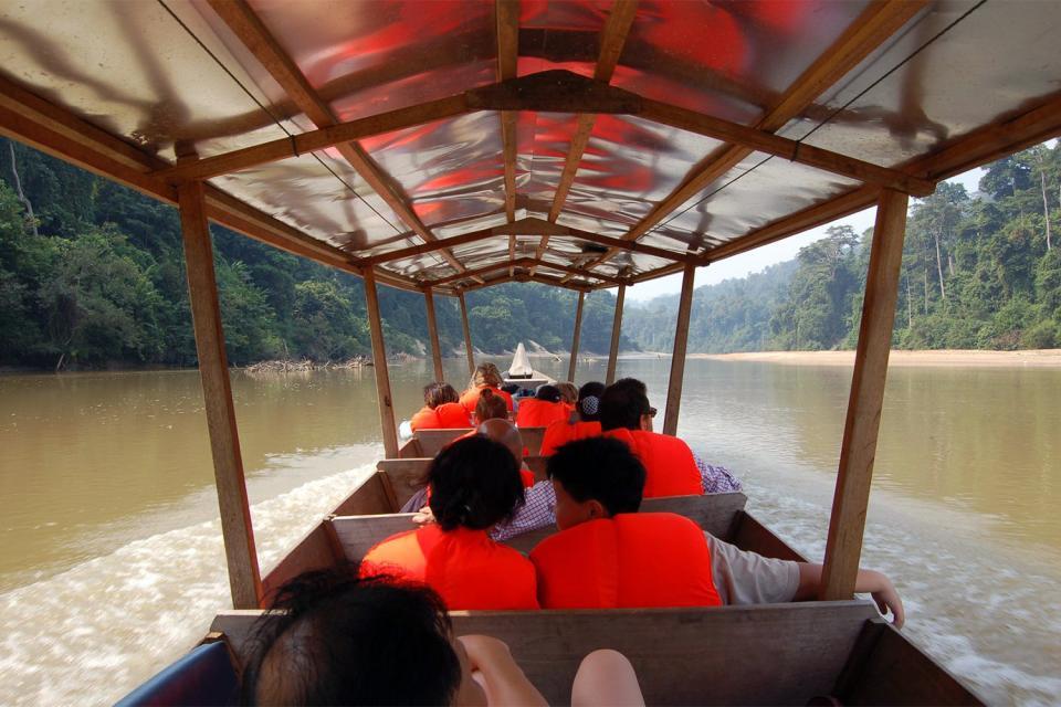 Le Parc national de Taman Negara , Malaisie