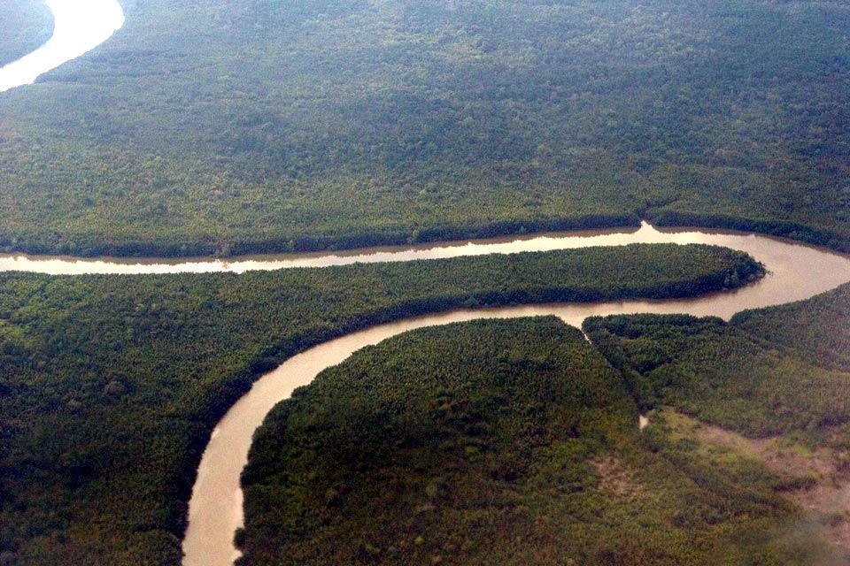 La jungle du Sarawak (Bornéo) , Le fleuve Sarawak , Malaisie