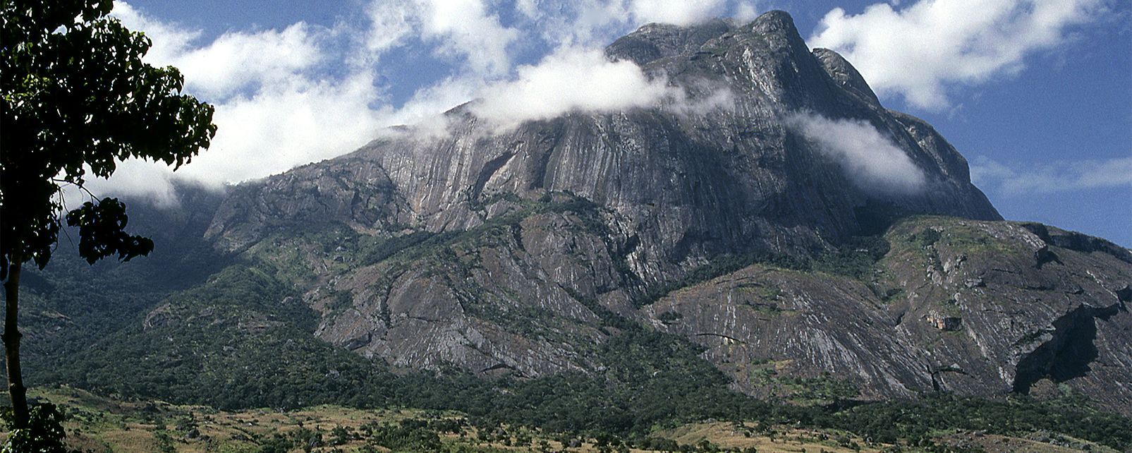 Image result for Mount Mulanje, Malawi