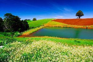 Tasmanien , Australien