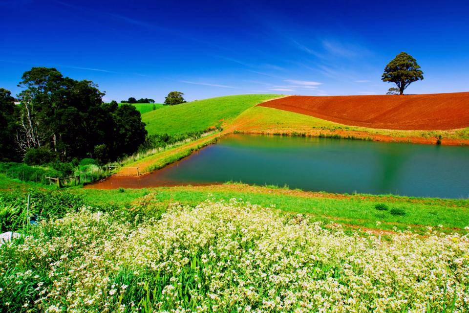 La Tasmanie , Australie