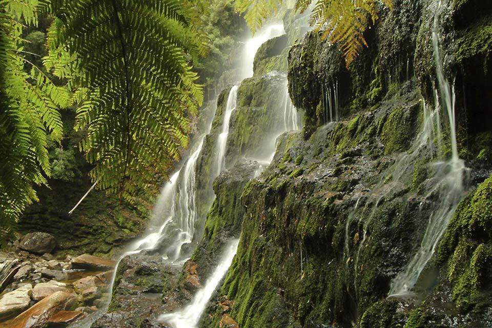 Tasmania , Russell Falls, Mount Field National Park , Australia