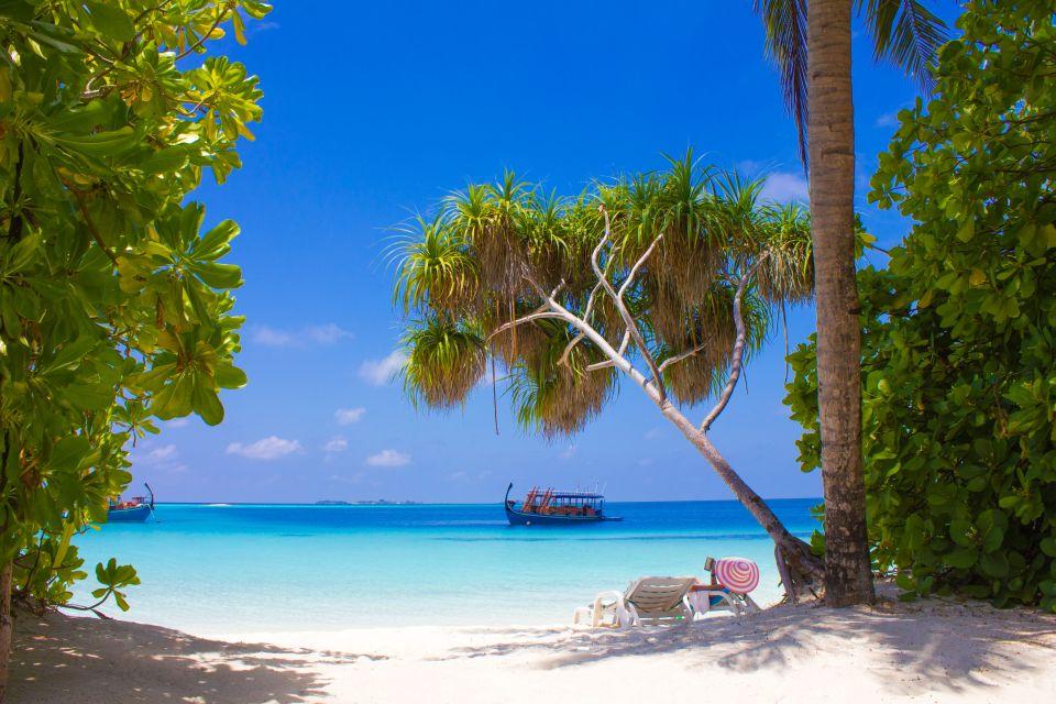 Mangrovie esotiche, Atollo di Ari - L'isola di Vilamendhoo, I paesaggi, Maldive