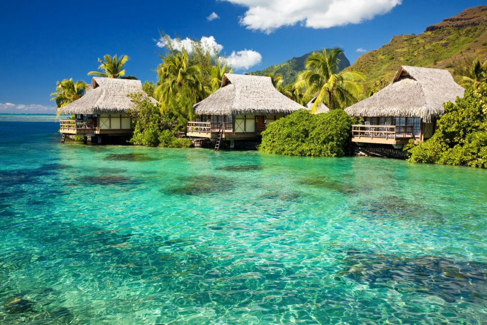 Les côtes, ?le, mal?, maldives, asie, oc?an indien, mal?, mal? nord, atoll, kanifinolhu