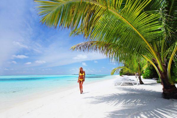 South Kaafu (or Malé) Atoll - Rihiveli Island, South Malé Atoll - Rihiveli Island, Coasts, The Maldives