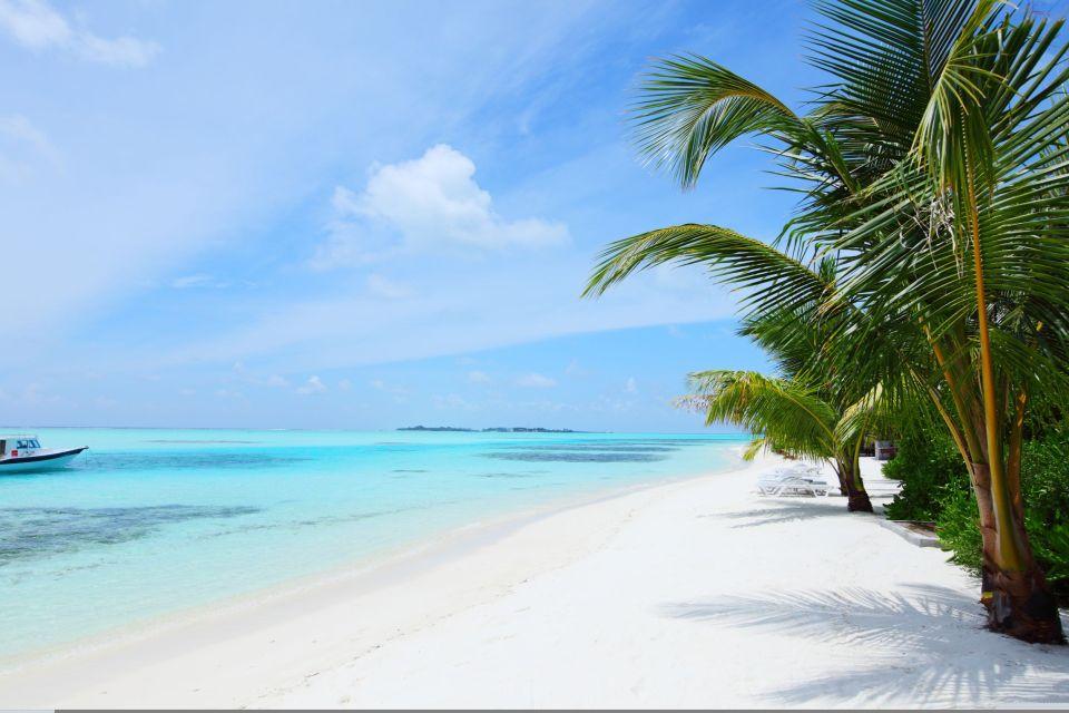 Accessible islets, Maldives, South Malé Atoll - Rihiveli Island, Coasts, The Maldives