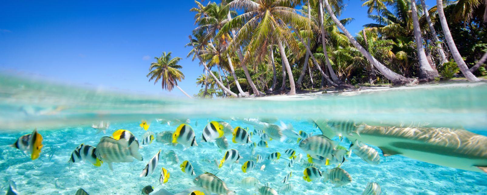 South Nilandhoo Atoll, Maldives, South Nilandhoo atoll, Coasts, The Maldives