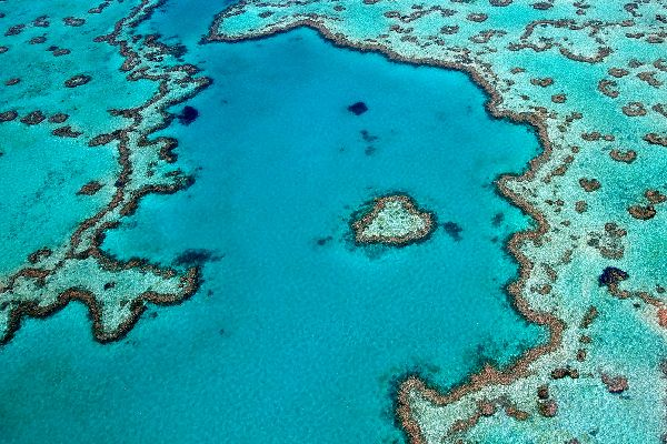 Das Great-Barrier-Reef , Das Great-Barrier Reef , Australien