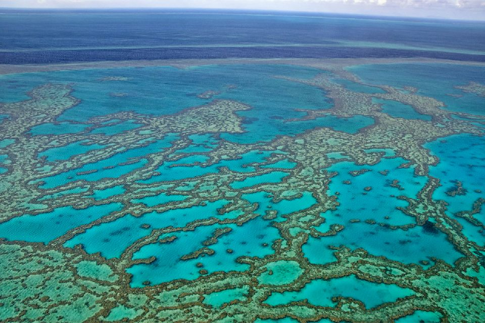 The Great Barrier Reef , The largest living animal , Australia