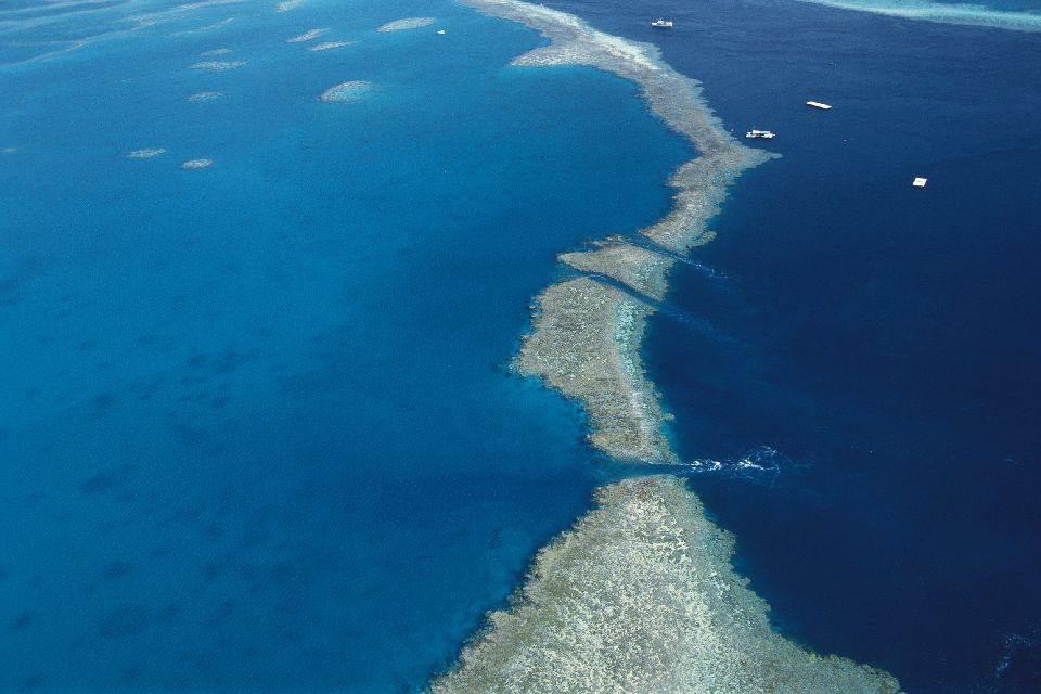 The Great Barrier Reef , Threats to the reef , Australia