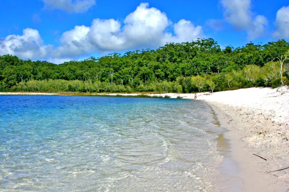 Fraser Island , The largest sandy island in the world , Australia